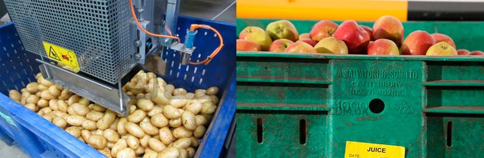 Пластиковые контейнеры, как основной способ хранения и транспортировки продовольственных товаров и сырья