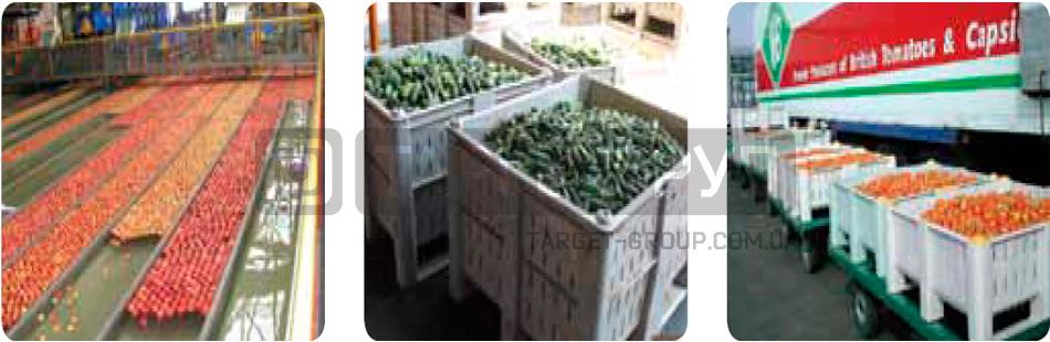 Пластиковые контейнеры: что нужно знать о сферах применения